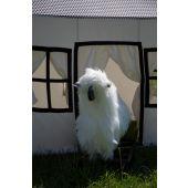 Rocking Sheep - Teak Wood - White Black