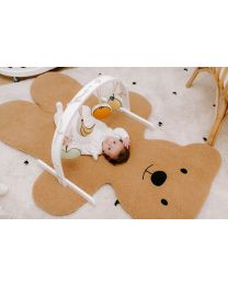 Baby Gym Fruit Toys - Canvas - Set Of 4