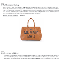 Blogzine Mommy Bag