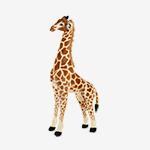 Standing Stuffed Animals